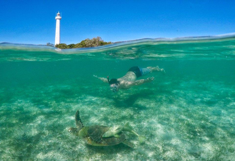 snorkelling near amedee island