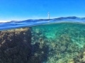 Amedee Island (45min by boat from Noumea)